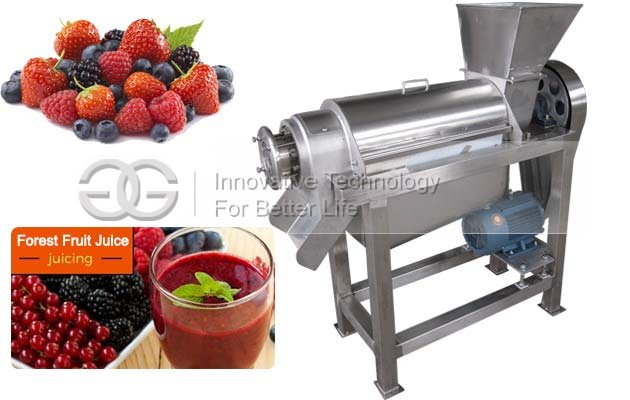 CE Approved Sprial Fruit Juice Extracting Machine