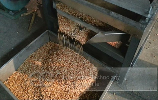 Cocoa Bean Peeling Cutting Machine