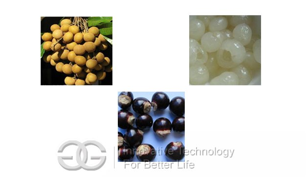 Good Quality Longan Seeds Removing Machine