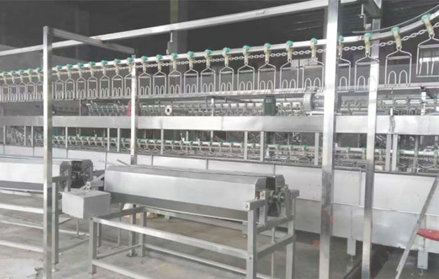 1000 bph Automatic Quail Slaughter Line