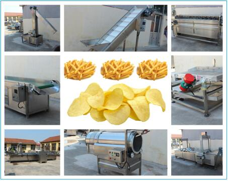 french fries plant