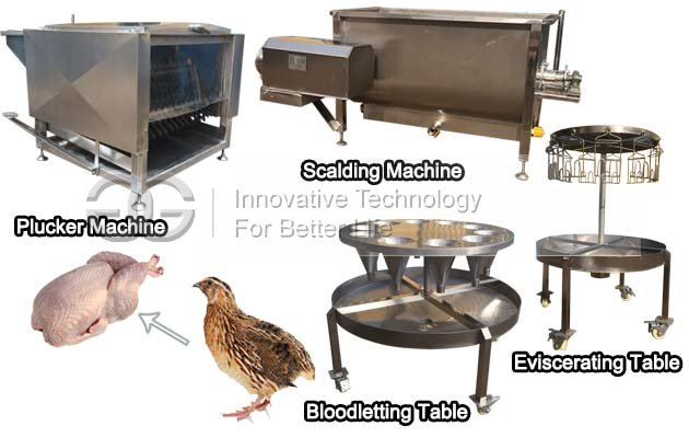 Small Quail Slaughtering Machine