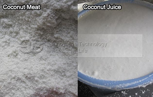 Commerical Coconut Juice Making Machine|Coconut Water Extracting Machine