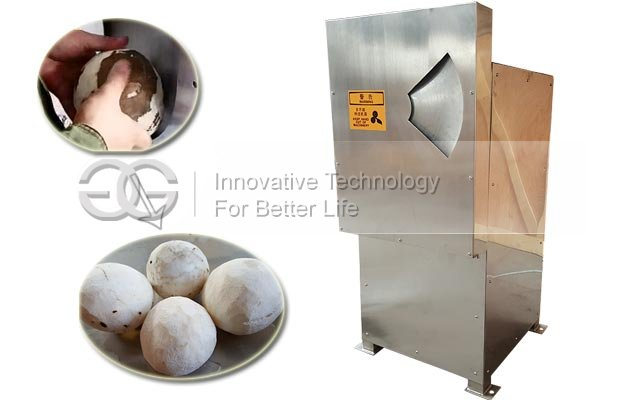 Semi Automatic Coconut Meat Peeling Machine for Sale