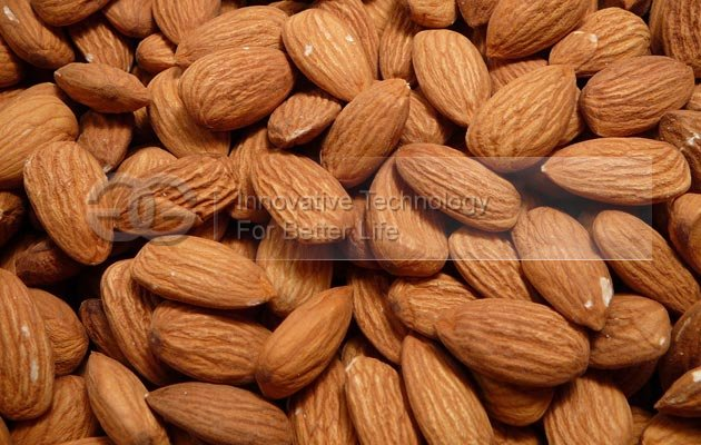 Drum Type Almond Roasting Machine Equipment for Sale