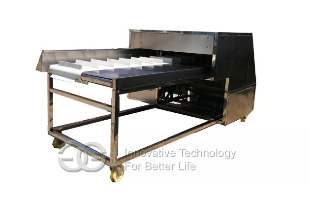 Needle Mushroom Root Cutting Machine With Price