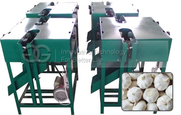 Garlic Root Flat Cutter Machine Manufacturer in China