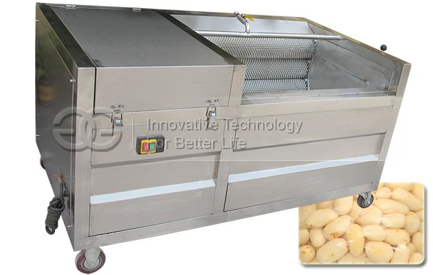 Fruit and Vegetable Washing and Peeling Machine