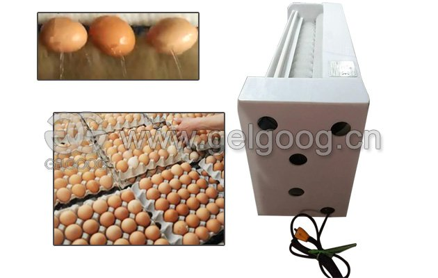 Eggs Washing Machine