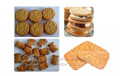 400kg/h Industrial Biscuit Product Line