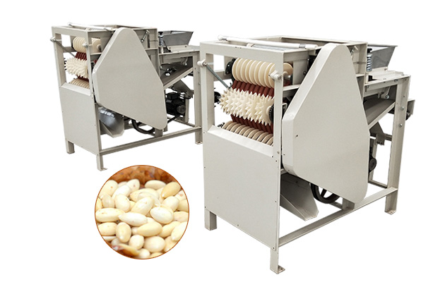 Almond Blanched Peeling Machine for Almond Milk