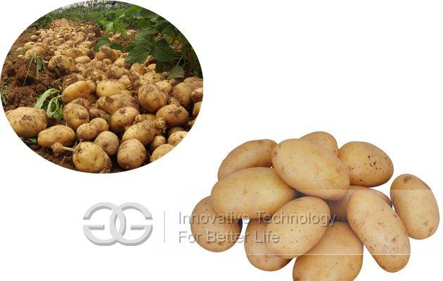 Big Capacity Potato Washing and Cutting Machine Commercial