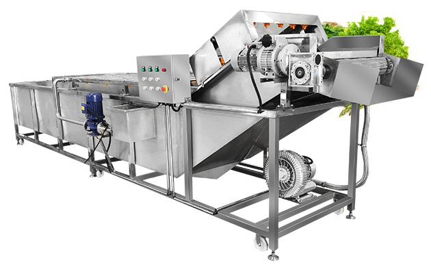 Bubble Type Leafy Vegetable Cleaning Machine