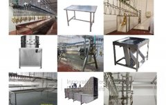 1000pcs/h Automatic Poultry Slaughtering Production Line