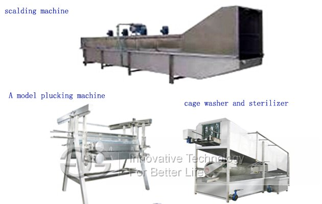 3000pcs/h Automatic Poultry Slaughtering Machine