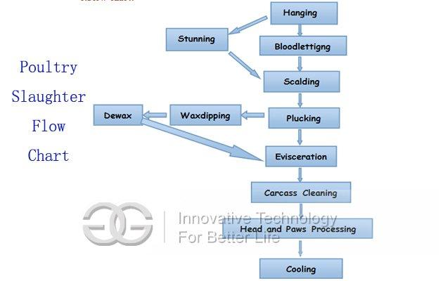 2000pcs/h Automatic Poultry Slaughtering Production Line