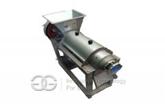 Fruit Juice Extraction Machine