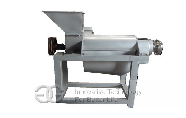 Fruit Juice Extraction Machine