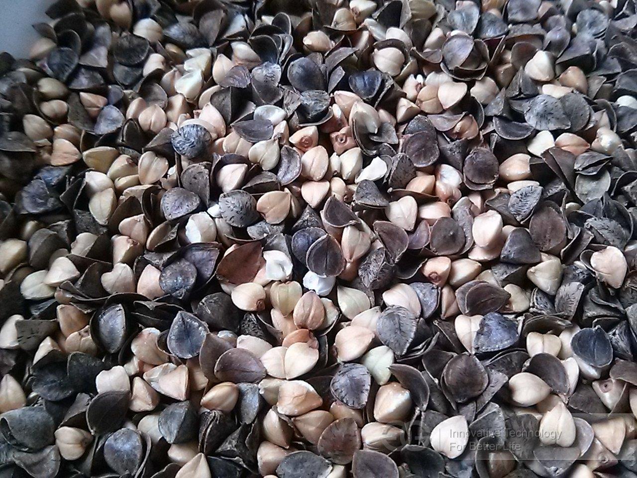 High Shelling Rate Buckwheat Sheller Machine