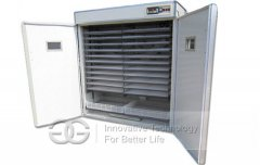 Goose Egg Incubator Price Video Manufacturer For Sale