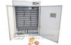 High Quality Chicken Egg Incubator