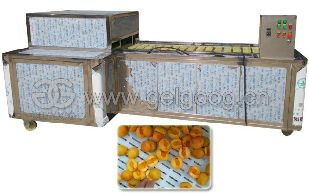 Apricot Pitting Machine Cherry Pit Removal Machine