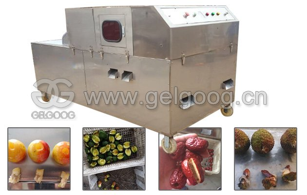 Red Dates Seed Removing Machine Date Pitter for Sale