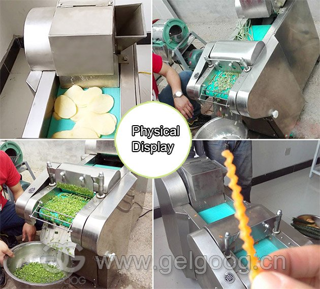 Green Leafy Vegetable Cutting Machine