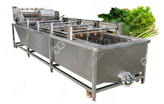 Industrial Leafy Vegetable Bubble Washing Cleaning Machine
